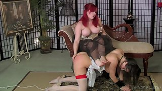 Ample breasted mistress in corset spanks and fucks submissive battle-axe